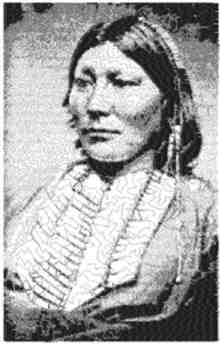 Chief White Horse