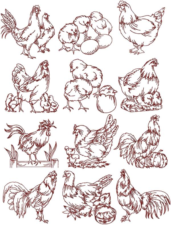 Advanced Embroidery Designs Rooster And Hen Redwork Set