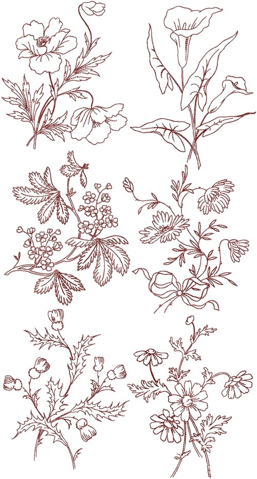 Advanced Embroidery Designs Summer Flowers Redwork Set Ii