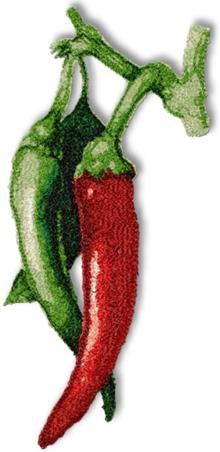 6 sizes Machine embroidery design Chilli Pepper frame