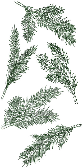 One-Color Pine Branches Set